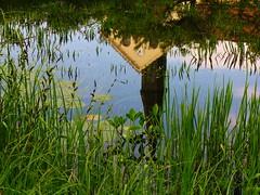IMG_5794 Spiegelbild /Reflection / Juni (Traud) Tags: germany deutschland bavaria bayern teich pool biotop feuchtbiotop sommer kirche church reflection spiegelbild
