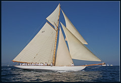 The crews weight concentrated .... (mhobl) Tags: sailing crew sainttropez tuiga