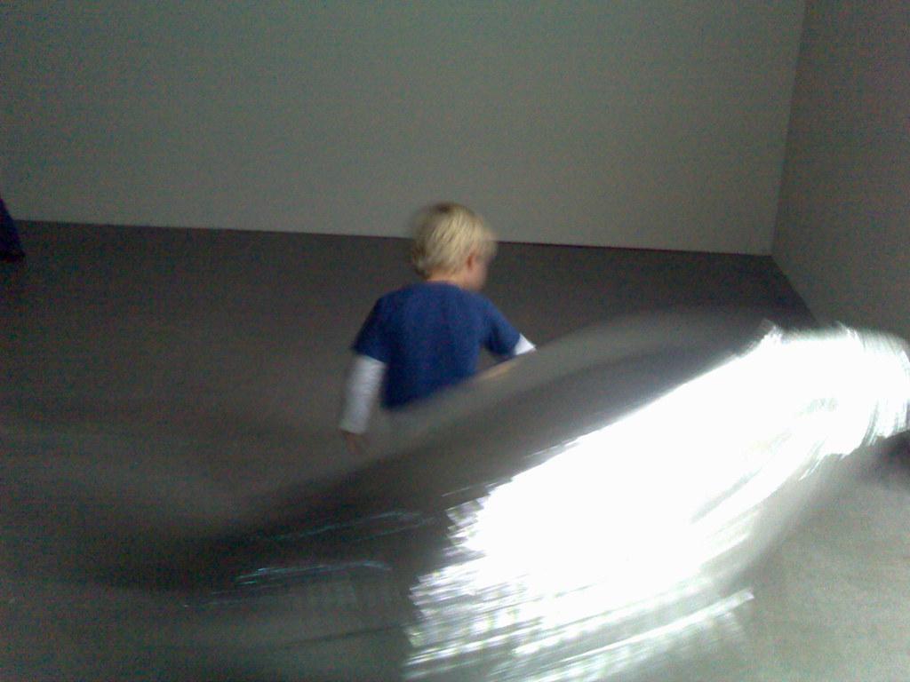 Skip bij Andy Warhol's Silver Clouds