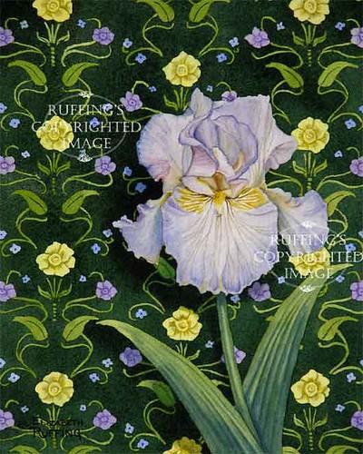"""Lavender Iris on Green"" ER29 by Elizabeth Ruffing Pale Lavender Iris Floral"
