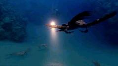 more sea scorpions