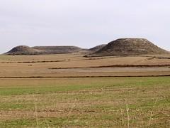 Primers indicis desprs de la sembra - Primeros indicios despus de la siembra 2 (fturmog) Tags: autumn otoo cereals cereales tardor secano sec montoliudelleida