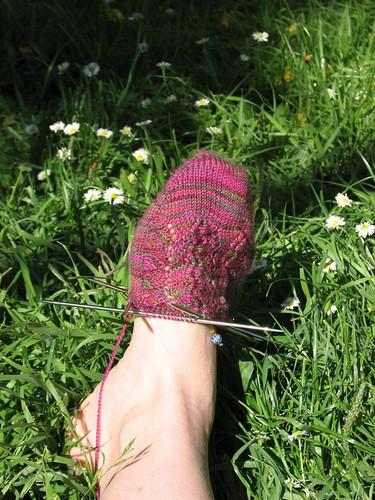 Roseleaf sock 1.1