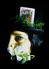 39/365 lily, rosemary and the jack of hearts (katie cowden) Tags: selfportrait origami bobdylan rosemary jackofhearts 365days explored