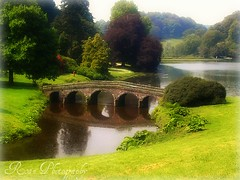 A perfect day..... (sallysue007) Tags: uk trees fab reflection nature water inspire pictureperfect takeabow golddragon supershots amazingshots superbmasterpiece crystalaward diamondclassphotographer flickrdiamond flickrelite brillianteyejewell overtheexcellence dragongoldaward