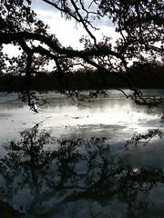 Pagodenburger See