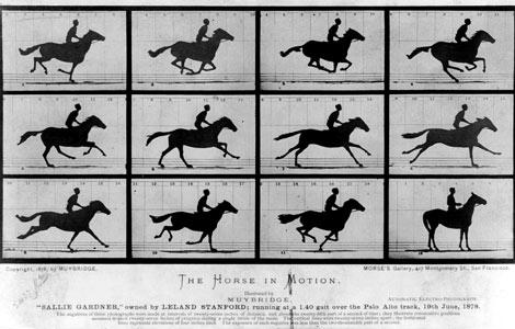 horse-in-motion-muybridge1878-ga