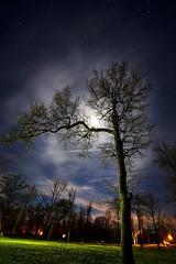 IMGP-4531 (Bob West) Tags: longexposure nightphotography moon ontario night lightroom sigma1020mm rondeauprovincialpark southwestontario bobwest k10d