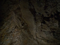 Looking up (hamlette2002) Tags: alex fieldtrip grandcanyoncaverns