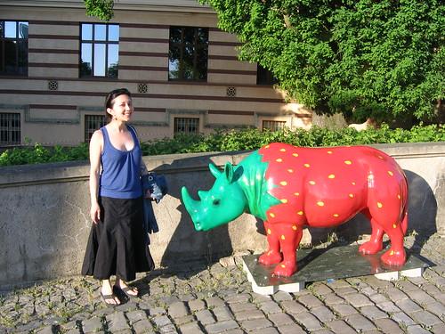 katie&rhino