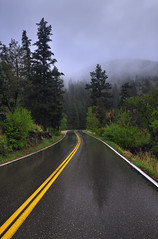 Misty Mountain Road Trip (Fort Photo) Tags: road travel mist mountains nature rain vertical misty fog forest landscape drive vanishingpoint spring nikon colorado fort weekend fortcollins co collins countryroad memorialday conifers blacktop yellowline centerline larimer d300 gulmidtstripe bratanesque stoveprairieroad