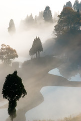 like Sumi-e painting (takay) Tags: white field japan misty fog landscape rice ricefield beautifulscenery matsudai  supershot  flickrsbest goldenmix golddragon platinumphoto anawesomeshot impressedbeauty aplusphoto superbmasterpiece diamondclassphotographer flickrdiamond superhearts takay excellentphotographerawards focuslegacy theunforgettablepictures wonderfulworldmix theperfectphotographer thegoldendreams mailciler