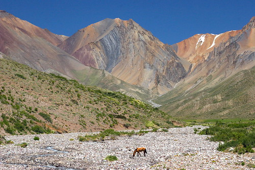 andes mountain range. (Andean Mountain Range)