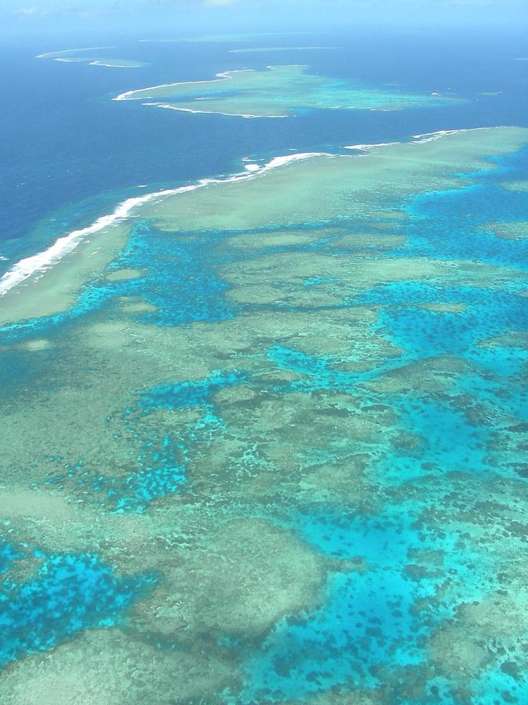 Colors del corall 1