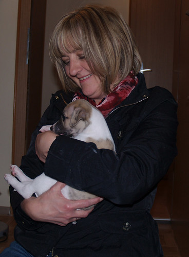 Gabi mit Anpu