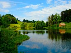 Wenigerweiher near St. Gallen (noelboss) Tags: wood blue trees sky lake green nature water grass clouds wasser day cloudy outdoor himmel reflectionlake gras blau stgallen wald weiher hightcontrast hoherkontrast grün noelboss