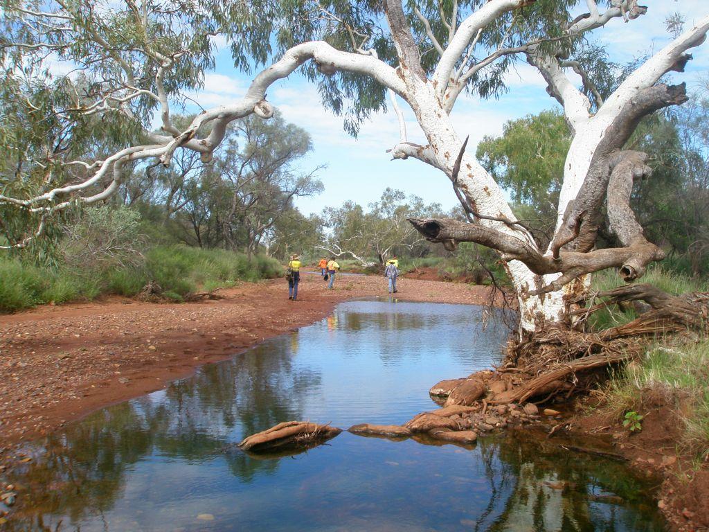 creekline1