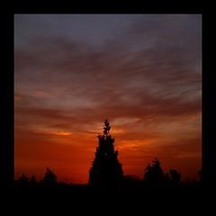Hidden Sunset (Kirsten M Lentoft) Tags: sunset tree home silhouette denmark glostrup greatphotographers mywinners anawesomeshot momse2600 infinestyle betterthangood kirstenmlentoft