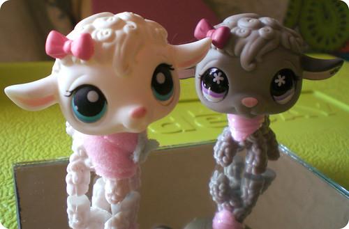 lambs by Kaarin.