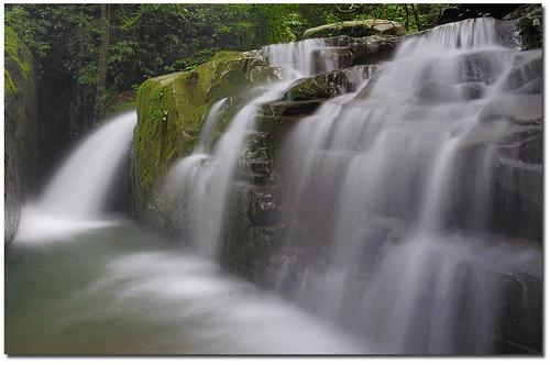 Many Flows