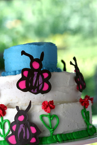 Butterfly Drawing Cake