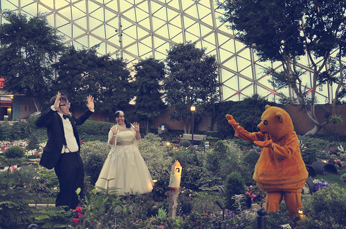 Ring bear attacking bride and groom