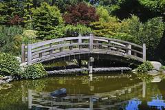 Moon Bridge Up Close, Hill And Pond Garden, Hakone Gardens, Saratoga, CA 2007 (Lone Cypress) Tags: california bridge garden japanese pond saratoga tranquility hakonegardens