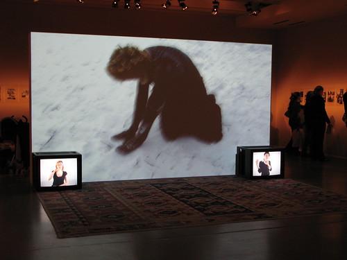 Documenta12-Luis Jacob