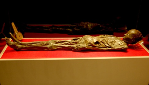 The Zagreb Mummy - a photo on Flickriver