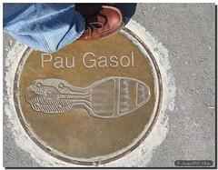 I'm not Pau Gasol / Yo no soy Pau Gasol