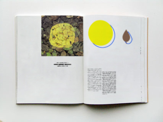 Bookdesign & concept for Landart Vol. II