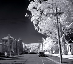 IR Streetscape (_setev) Tags: newzealand campus ir stephen infrared otago dunedin uni murphy downunder setev downunderphotos stephenmurphy