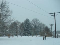 Snow Day - Feb 22