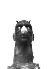 COB HEAD (christaki) Tags: leather washingtondc washington paint head wideangle dcist horn cob lead npg 1022mm nationalportraitgallery dcnw dcmuseum wpblog nancygrossman