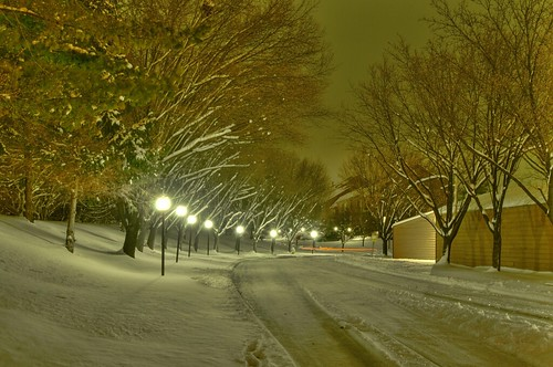 Snowy Entry