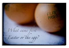 Egg Hunt... (Buikschuivers) Tags: 123 eggs d300 happyeastereveryone ©buikschuivers