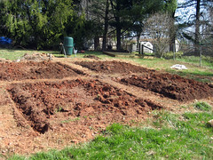 garden beds in progress