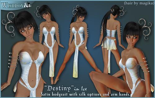 destinyice
