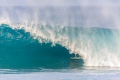 701C6527 (Hideki Ueha) Tags: volcompipepro hawaii surf surfing surfer surfboard northshore oahu pipeline banzaipipeline nathanflorance wsl worldsurfleague qs3000