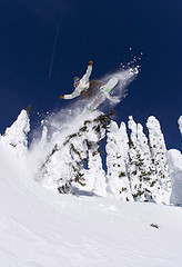 20060316_owlshea_fox_22 (whistlercreekproductions) Tags: jessefox treeride owlsheadbc whiteoutfilms~onetrackmind
