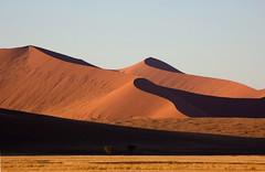 Shadows and Light (Patrick Costello) Tags: d50 sand desert dunes namibia namib abigfave