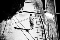 Para l (sis Martins) Tags: shadow urban man berlin lines linhas kreuzberg germany deutschland sombra urbano mann homem schatten rennen berlim alemanha correndo linien halleschesufer amrennen