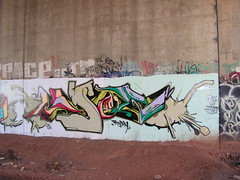 Loser (monolaps) Tags: graffiti jersey trackside