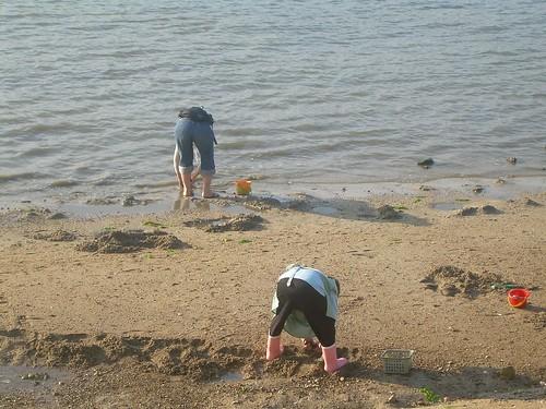 Mariscadores en Miyajima
