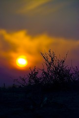 Flamey Sun Set (Fahad Al Nusf) Tags: pink blue sunset sun me yellow set digital nikon asia gulf middleeast flame ku arab chalet kuwait fahad kw arabiangulf q8 bnaider kwt  18200mm  shalaih nikon18200mm d80  nikond80 fenyn fahadalnusf alnusf