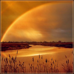 I can see a rainbow! (adrians_art) Tags: morning red orange water rain yellow reflections reeds bravo rivers rainbows raining naturesfinest firstquality weaher supershot justimagine mywinners abigfave anawesomeshot aplusphoto superbmasterpiece infinestyle favemegroup6 diamondclassphotographer flickrdiamond megashot theunforgettablepictures goldstaraward thegoldproject