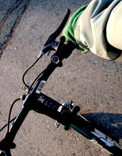 biking the kids to school