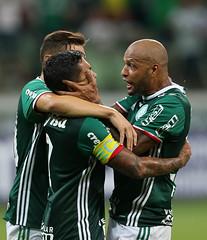 Palmeiras x São Bernardo (16/02) (sepalmeiras) Tags: allianzparque campeonatopaulista palmeiras sep sãobernardo sériea1 palmeirasxsãobernardo16022017 palmeirasxsaobernardo16022017 dudu