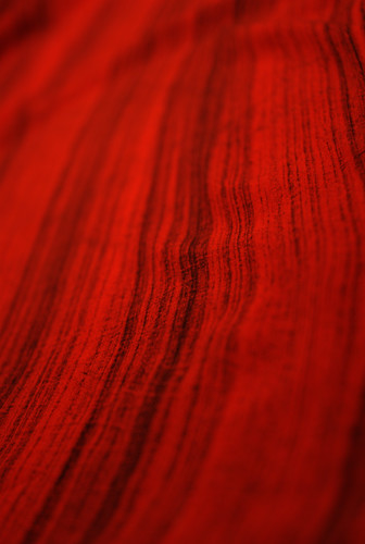 Red Tracks (1) - IMGP5118