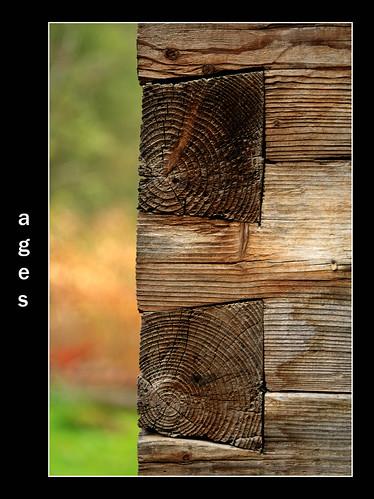 http://farm3.static.flickr.com/2241/2043595887_f4b0e1fbdd.jpg?v=0